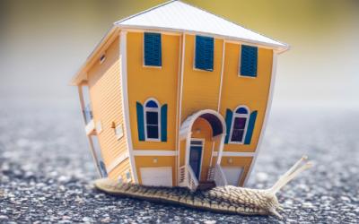 Rynek nieruchomości nadal stabilny
